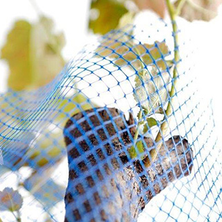 Protection Nets for Trees and Grape Wines from Breuers Verpackungen GmbH